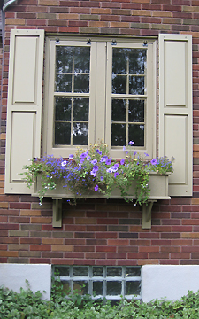 Flowers in windowboxes at cat veterinarian Dayton